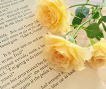 英字と黄色いバラ